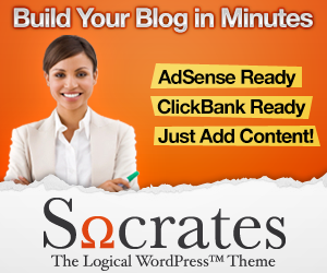 Socrates-Wordpress-Theme-300x250.png