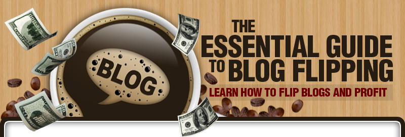 Introducing The Essential Guide To Blog Flipping