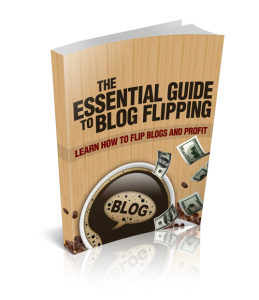 Learn how to flip blogs and profit