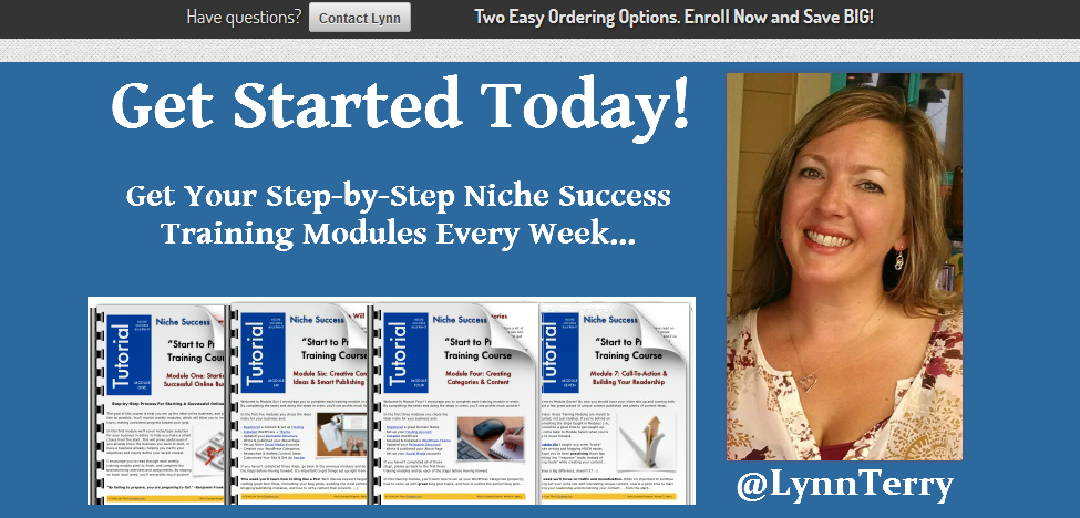 Niche Success Blueprint