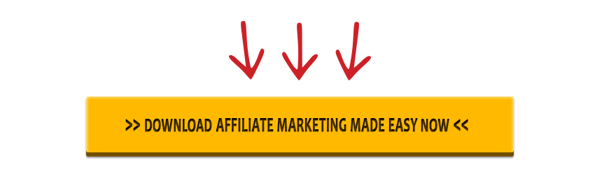 download this affiliate marketing training guide now