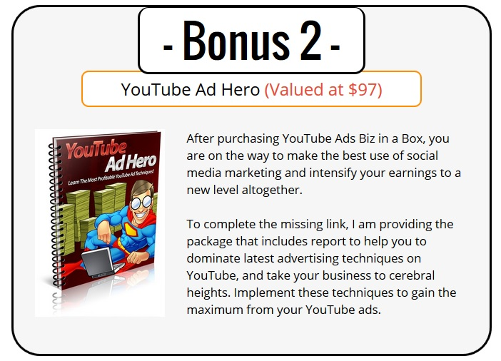 YouTube Ads PLR Bonus 2 - YouTube Ads Hero
