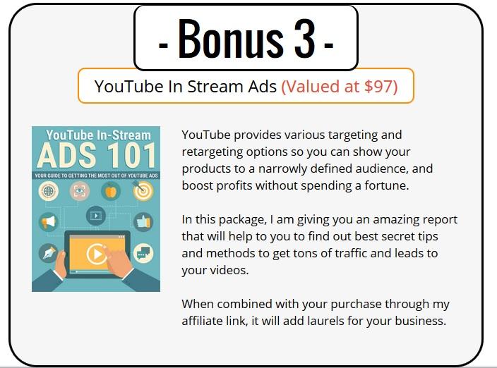 YouTube Ads PLR Bonus 3 - YouTube Instream Ads 101