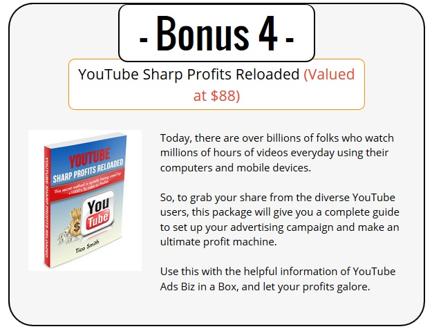YouTube Ads PLR Bonus 4 - YouTube Sharp Profits Reloaded