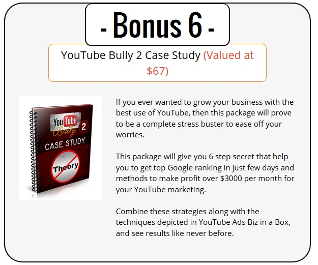 YouTube Ads PLR Bonus 6 - YouTube Bully 2 Case Study