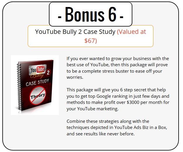 YouTube Ads PLR Bonus 6 - YouTube Bully 2 Case Study
