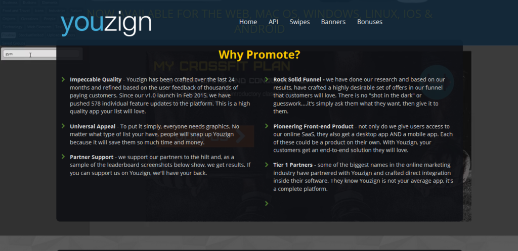 Affiliate Marketing - Youzign Review