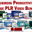 Business Productivity Huge PLR Video Bundle 1