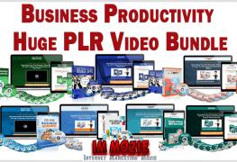 Business Productivity Huge PLR Video Bundle 1