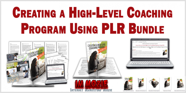 Creating a High Level Coaching Program Using PLR Bundle