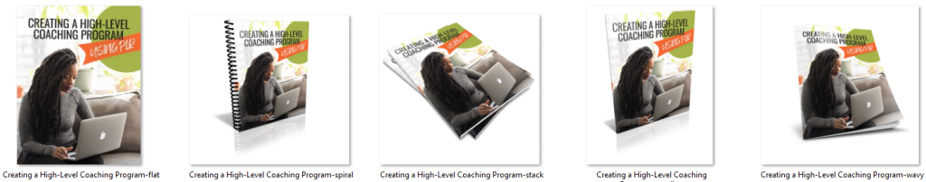 High Level Coaching Program Ecovers