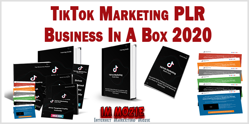 TikTok Marketing PLR Business In A Box 2020 1