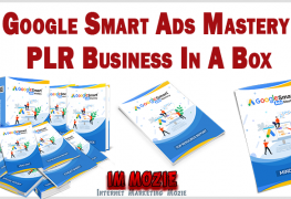 Google Smart Ads Mastery PLR Business In A Box