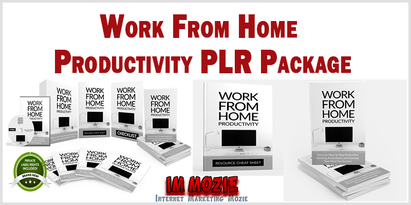 Work From Home Productivity PLR Package