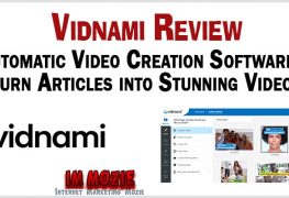 Vidnami Review