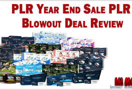 PLR Year End Sale PLR Blowout Deal Review