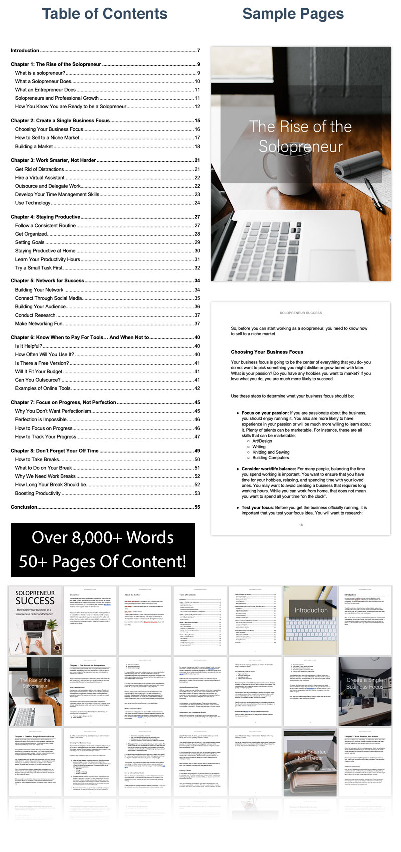 Solopreneur Success Ebook Preview