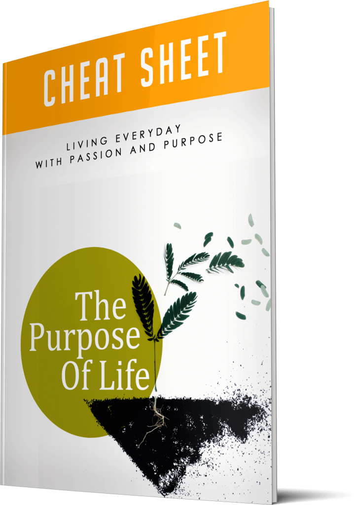 The Purpose Of Life Cheatsheet